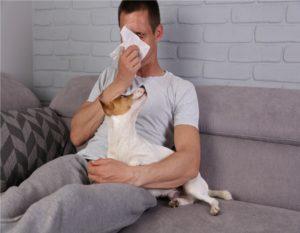 Man having pet allergy symptoms